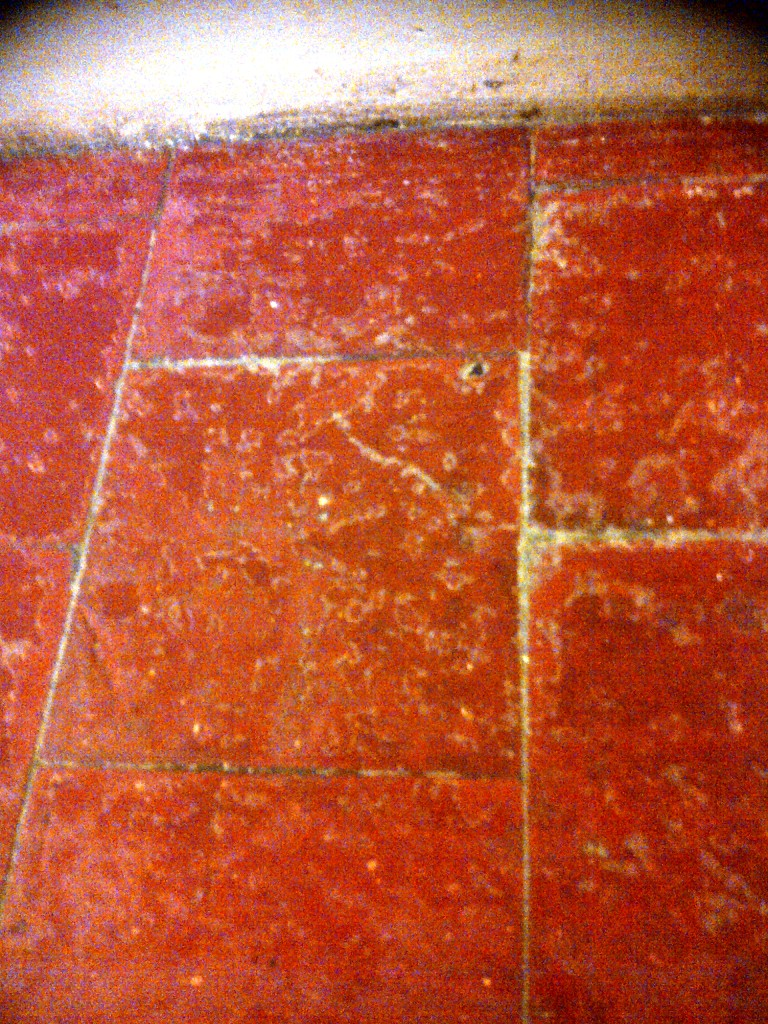 Quarry Tiles Failed Sealer