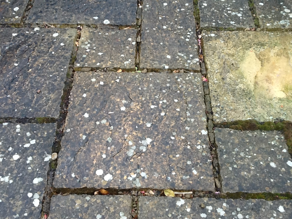Sandstone patio slabs before cleaning Rushden